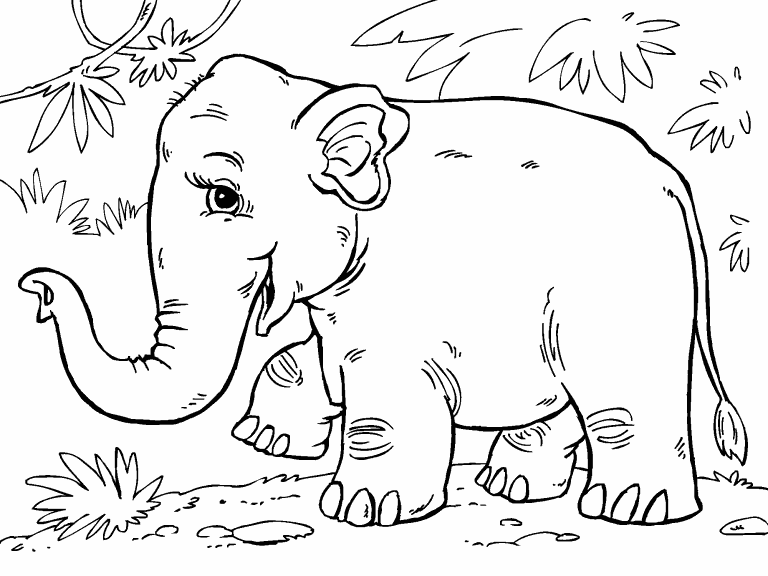 asian elephant coloring page coloring pages 4 u. Black Bedroom Furniture Sets. Home Design Ideas